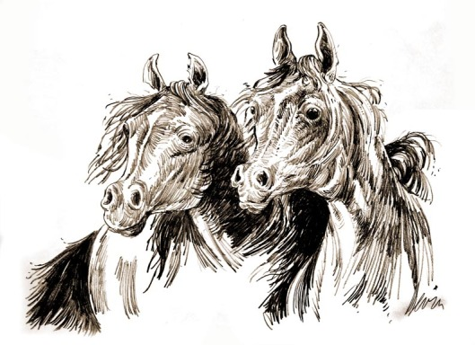 Wild horses sketch by Lon Levin