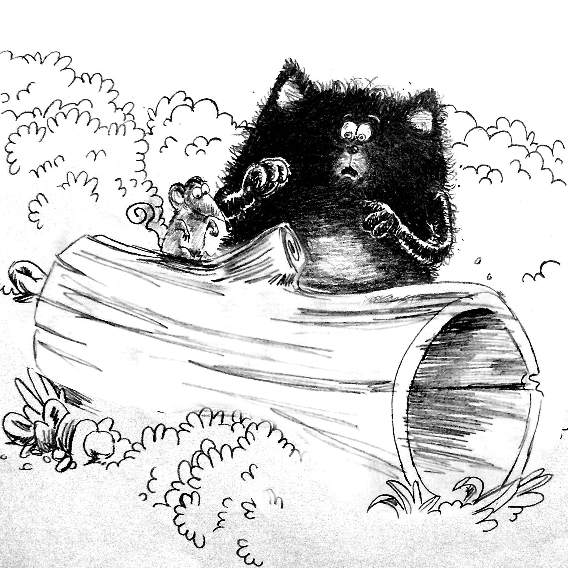 splat the cat coloring pages - levinland studio the illustrators journal page 12