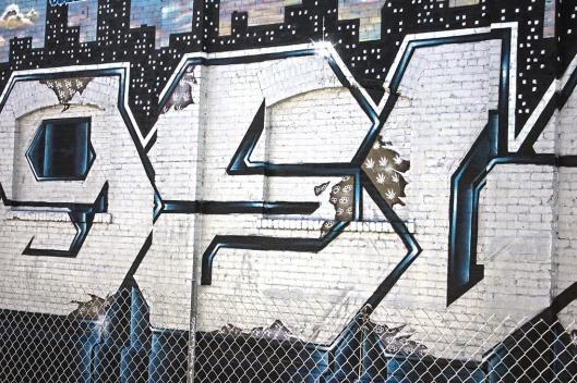 graffitti_9548.lr
