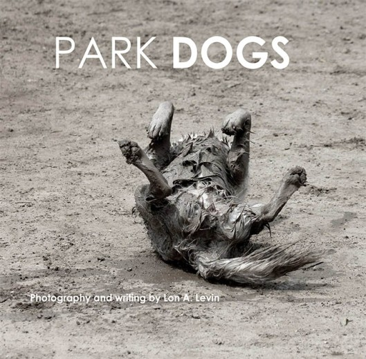 PARKDOGS-1