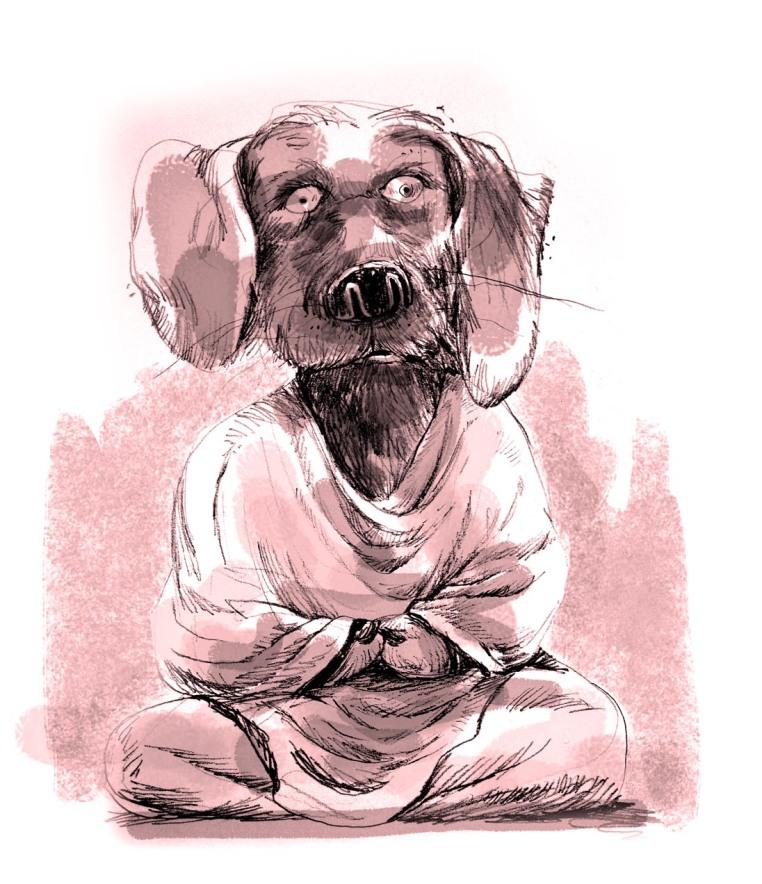 MY BUDDHA DOG